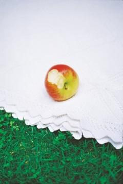 撮影に使われたリンゴ。どこに登場するか要チェック