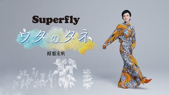 「Superfly」越智志帆さん、初のエッセイ連載がスタート!