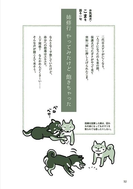 『影山直美の犬川柳』より 「お気楽犬・こまを語る一句」