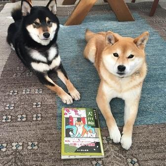 こちらは影山さんの愛犬・こま&ガク