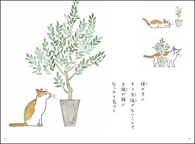 11のこと(1)「二十年」 猫の寿命は、長生きして二十年。あなたの今後二十年の人生すべての場面に「猫がいること」を想像してみてください。